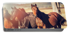 Australian Horses In The Paddock Portable Battery Charger