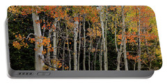 Portable Battery Charger featuring the photograph Autumn As The Seasons Change by James BO Insogna