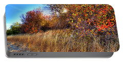 Portable Battery Charger featuring the photograph Autumn At Magpie Forest by David Patterson