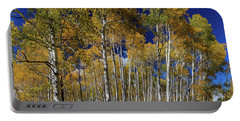 Portable Battery Charger featuring the photograph Autumn Blue Skies by James BO Insogna