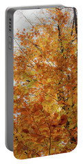 Autumn Explosion 1 Portable Battery Charger