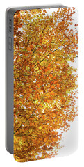Autumn Explosion 2 Portable Battery Charger