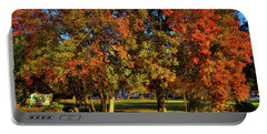 Portable Battery Charger featuring the photograph Autumn In Reaney Park by David Patterson