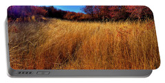 Portable Battery Charger featuring the photograph Autumn Path by David Patterson