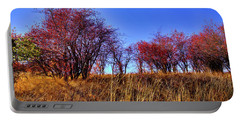 Portable Battery Charger featuring the photograph Autumn Sun by David Patterson