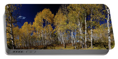Portable Battery Charger featuring the photograph Autumn Walk In The Woods by James BO Insogna