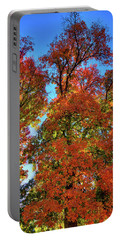 Portable Battery Charger featuring the photograph Backlit Autumn by David Patterson