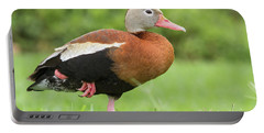 Balancing Black Bellied Whistling Duck Portable Battery Charger