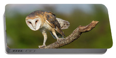 Barn Owl 5151801 Portable Battery Charger