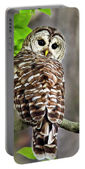 Portable Battery Charger featuring the photograph Barred Owl by Christina Rollo