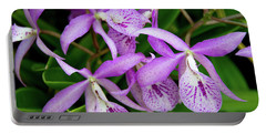 Bc Maikai 'louise' Orchid Portable Battery Charger