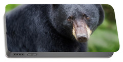 Bear Stare Portable Battery Charger