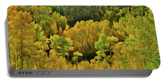 Beautiful Fall Colors At Woods Lake State Wildlife Area Portable Battery Charger