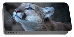 Beautiful Puma Portable Battery Charger