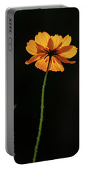 Portable Battery Charger featuring the photograph Behind Light And Shadow by Dale Kincaid
