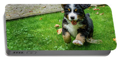 Bernese Mountain Dog Puppy Running Portable Battery Charger