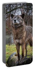 Best Of Show Pose Portable Battery Charger