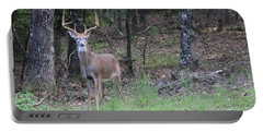 Big Buck Portable Battery Charger