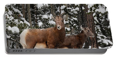 Bighorn Sheep In Deep Snow Portable Battery Charger
