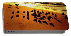 Portable Battery Charger featuring the photograph Bird Shadows by Tom Gresham