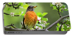 Birds - American Robin - Nature's Alarm Clock Portable Battery Charger