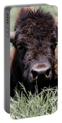 Bison In Custer State Park South Dakota Portable Battery Charger