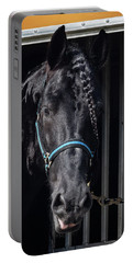 Black Beauty Portable Battery Charger