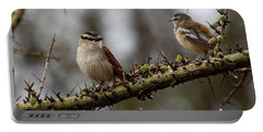 Black-crowned Tchagra And White-browed Scrub-robin Portable Battery Charger