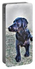 Black Labrador Retriever - Daisy Portable Battery Charger