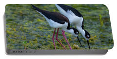 Black-necked Stilts Portable Battery Charger