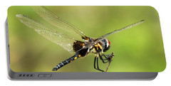 Black Saddlebags Dragonfly Portable Battery Charger