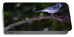 Blue Jay Portable Battery Charger