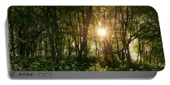Blue Ridge Parkway - Last Of Summers Light, North Carolina Portable Battery Charger