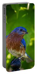 Bluebird Portable Battery Charger