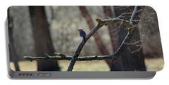 Bluebird, Bluebird, Sing To Me Portable Battery Charger