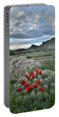 Book Cliffs Clarion Cactus Portable Battery Charger