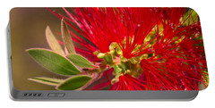 Bottlebrush Autumn Warmth Portable Battery Charger