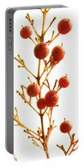 Brazilian Pepper 0482 Portable Battery Charger