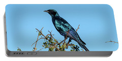 Burchell's Starling Portable Battery Charger