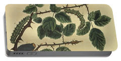 Butterflies, Caterpillars And Plants Plate 1 Portable Battery Charger