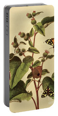 Butterflies, Caterpillars And Plants  Plate Vii Portable Battery Charger