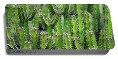Cacti Wall Portable Battery Charger