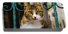 Cat On A Fence Portable Battery Charger