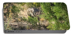 Cautious Coyote Portable Battery Charger