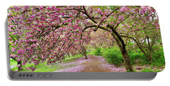 Central Park Cherry Blossoms Portable Battery Charger