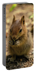 Chipmunk Portable Battery Charger