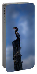 Cinematic Looking Anhinga Portable Battery Charger