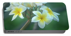 Cloudy Day Plumerias Portable Battery Charger