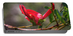 Portable Battery Charger featuring the photograph Cockies Tongue Templetonia Retusa by Elaine Teague