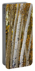 Portable Battery Charger featuring the photograph Colorado Aspens by Tom Gresham